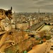 Gargoyle Over Paris (HDR)