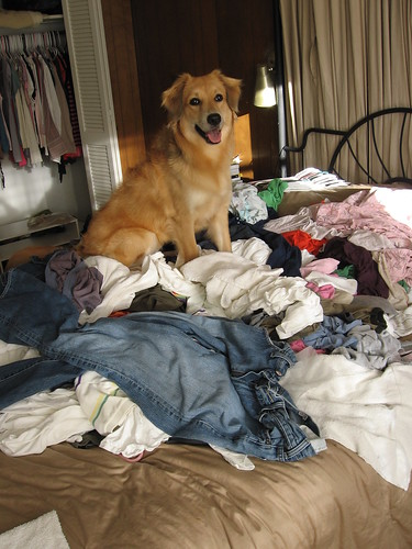 Folding clothes and such 2009-08-02 002