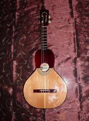 tanbur(0.0), banjo uke(0.0), acoustic-electric guitar(0.0), cuatro(1.0), string instrument(1.0), ukulele(1.0), acoustic guitar(1.0), guitar(1.0), vihuela(1.0), string instrument(1.0),