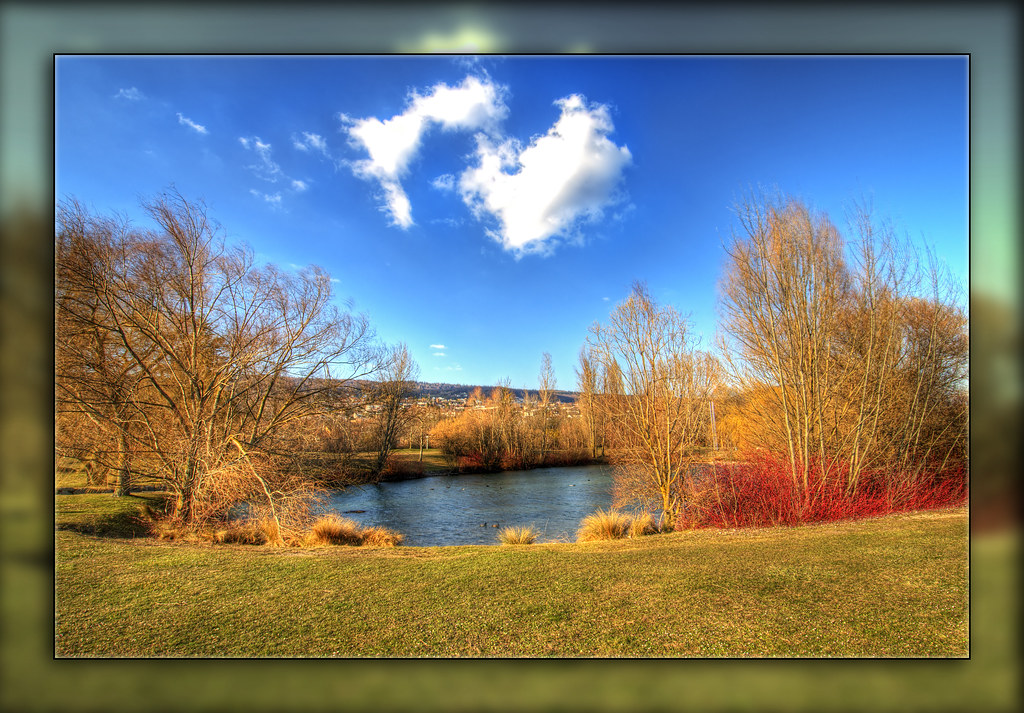 Pond and cloud