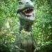 Small photo of OMG Allosaurus