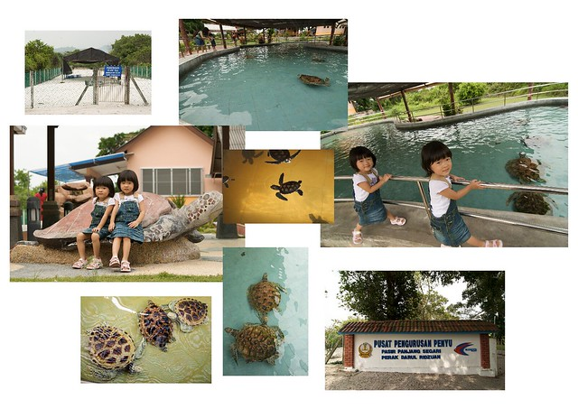 Renice and Renee at the Pasir Panjang Segari Turtle Management Center (via Aperture Light Table)