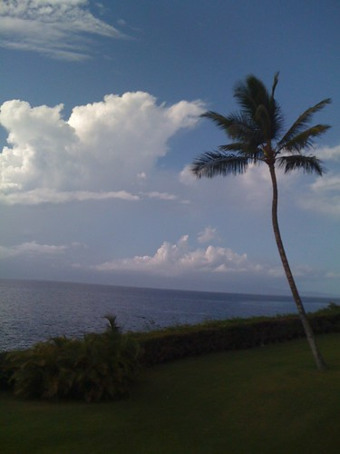 hawaii maui iphone twitter ifone
