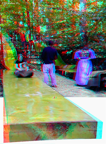 festival fun effects amusement 3d md child ride adult brian maryland slide anaglyph ps medieval stereo poke wallace renaissance slippery thrill crownsville outofbounds oof oob outofframe ttw popout outofborder