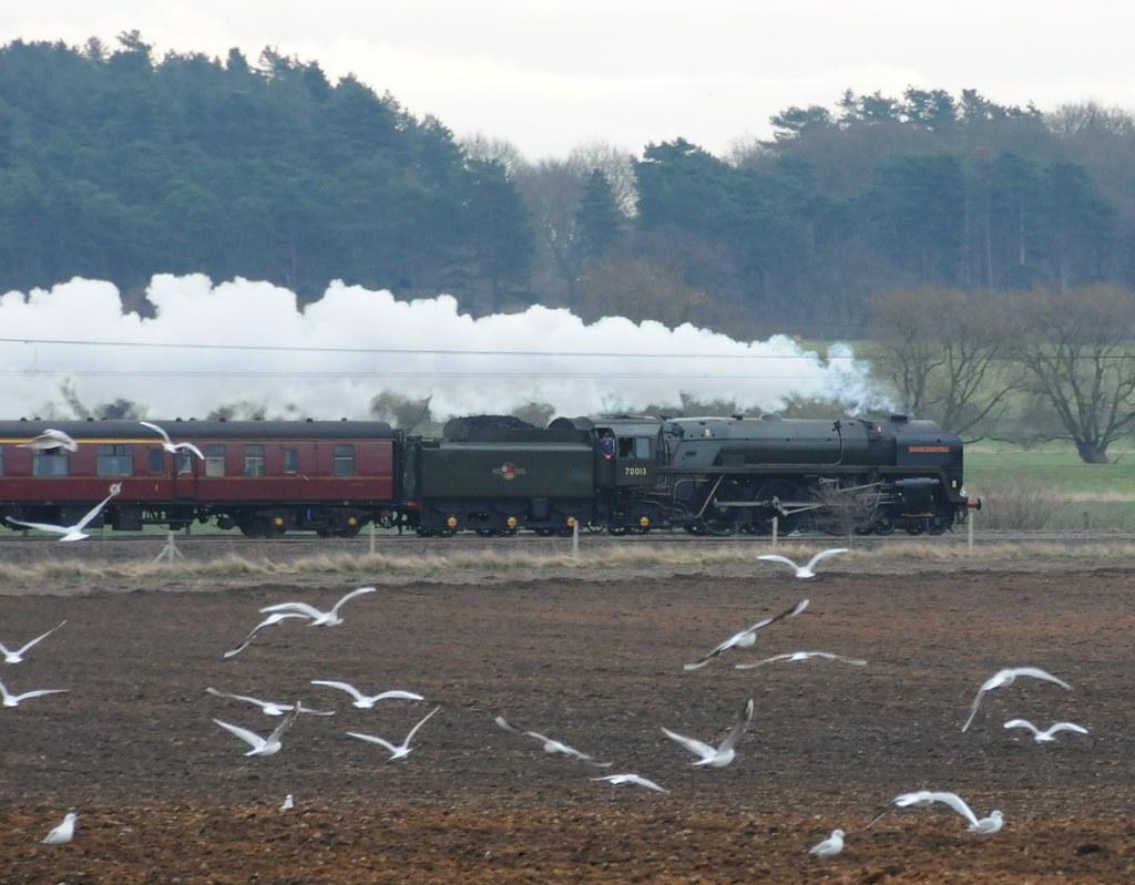 Near Bawtry Nottinghamshire 28th February 2009