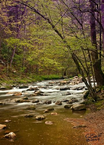 park usa mountain beautiful river nationalpark tn tennessee jol activities nikond200 10millionphotos greatsmokymountainnp 2008springgsmnp shootarounds