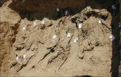afgdel 1-remains