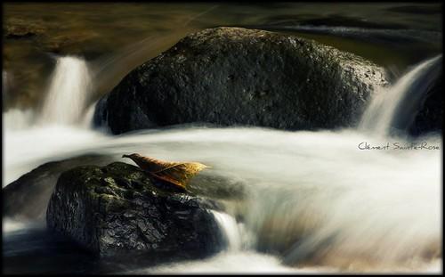 eau martinique picnik westindies rivière