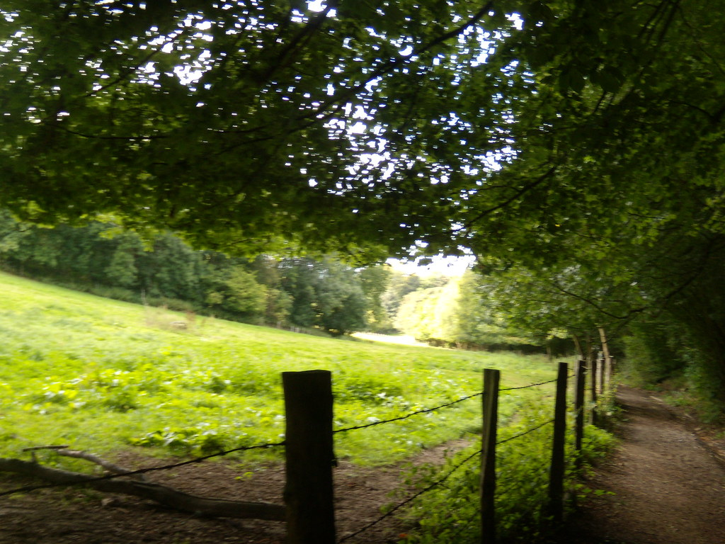 Along a path Borough Green to Sevenoaks