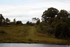 Phelps Pond at C. F. Phelps Wildlife Management Area - 4