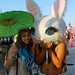 Billion Bunny March Against Humanity by Chicago_Tim