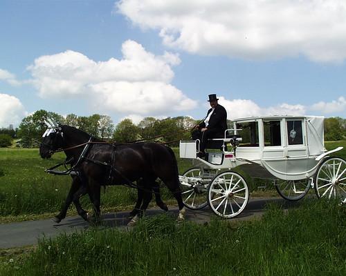 Eine omnibusartigen Kutsche mit einem Coupé vorn, wo neben dem Kutscher noch der Kondukteur sowie ein Passagier sitzen kann, wie auf der Hochzeitskutsche in Mulda 017