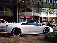 lamborghini reventã³n(0.0), automobile(1.0), wheel(1.0), vehicle(1.0), performance car(1.0), automotive design(1.0), land vehicle(1.0), luxury vehicle(1.0), lamborghini murciã©lago(1.0), supercar(1.0), sports car(1.0),