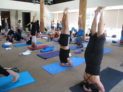 yoga, Giselle Mari, FunkyJiva, head stand IMG_0154