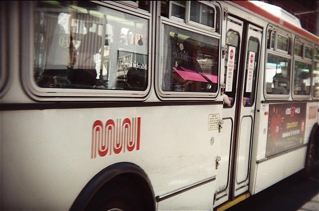 Holga Bus