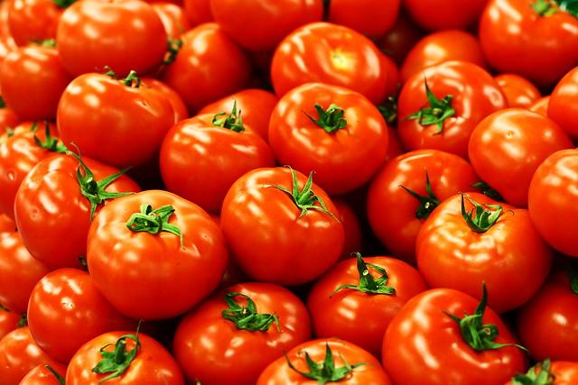 トマト農園「500円でトマト食べ放題!」←誰が喜ぶんだよ、と思ったら30個食って帰ったトマト狂がいるらしい