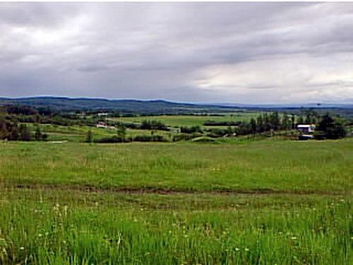 Whitecourt (AB) Canada  city photos : alta99g20tom Farm Field View, Whitecourt AB 1999 | Flickr Photo ...