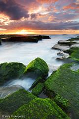 Green Rocks @ Turimetta