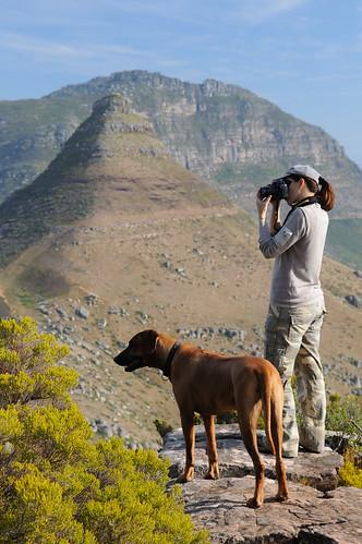 Klein Leeukop Cape Town