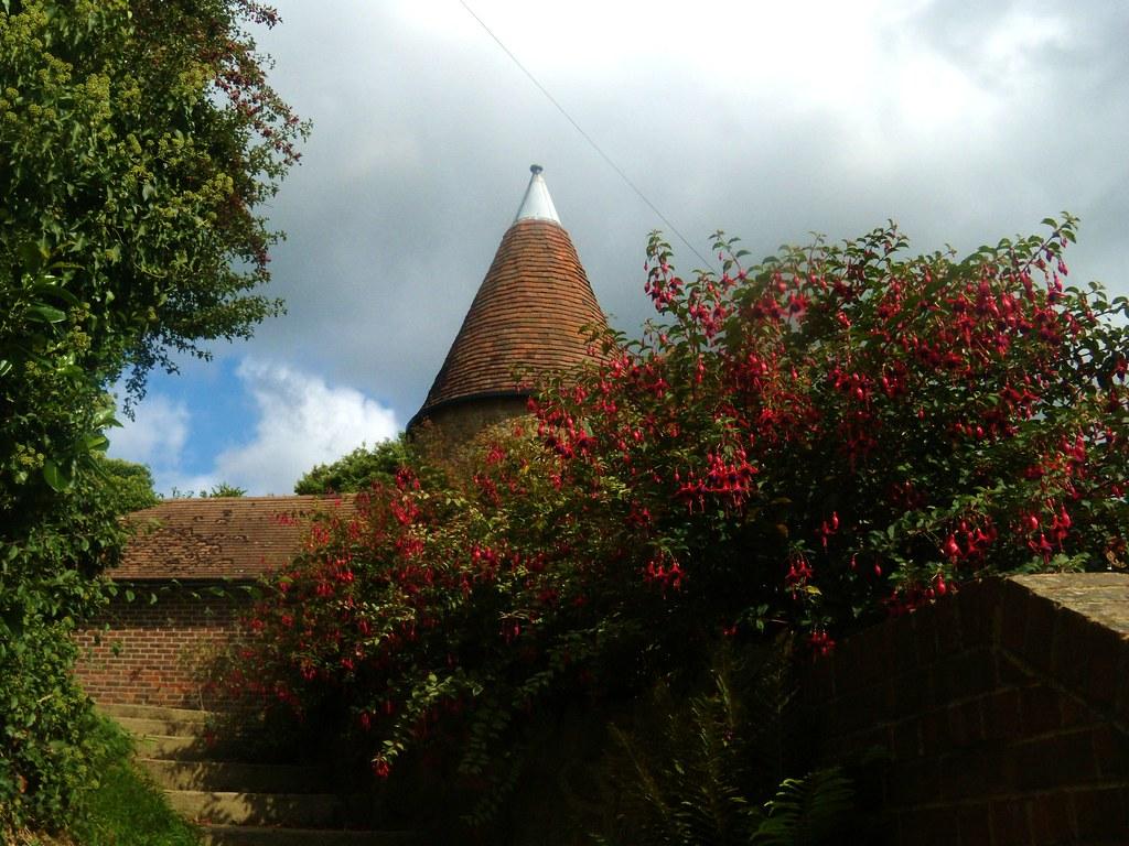Oasthouse with fuschia Edenbridge to Westerham