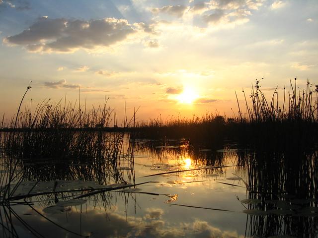 El Delta del Okavango, Botsuana