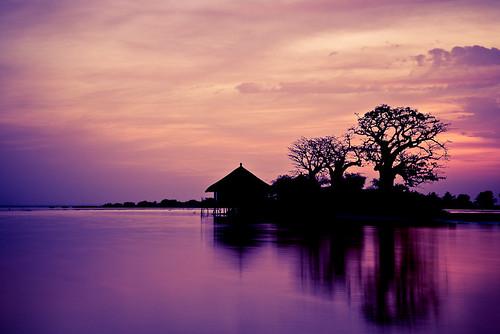 africa senegal palmarin flickrsbest abigfave collinesdeniassam niassam