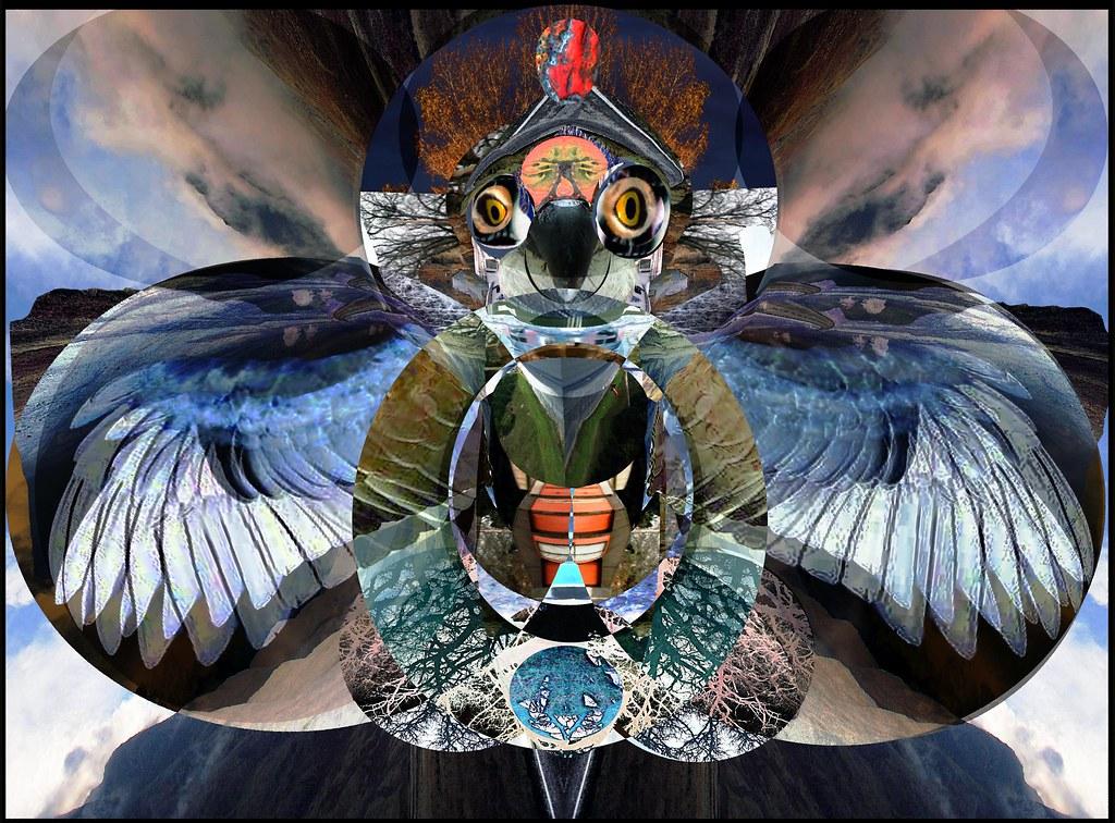 Choctaw lightning bird, Melatha .....