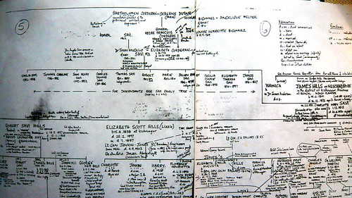 Part of the Pugh Family Tree showing the Savi/Corderan connection (Photo offered by Herry Lawford)