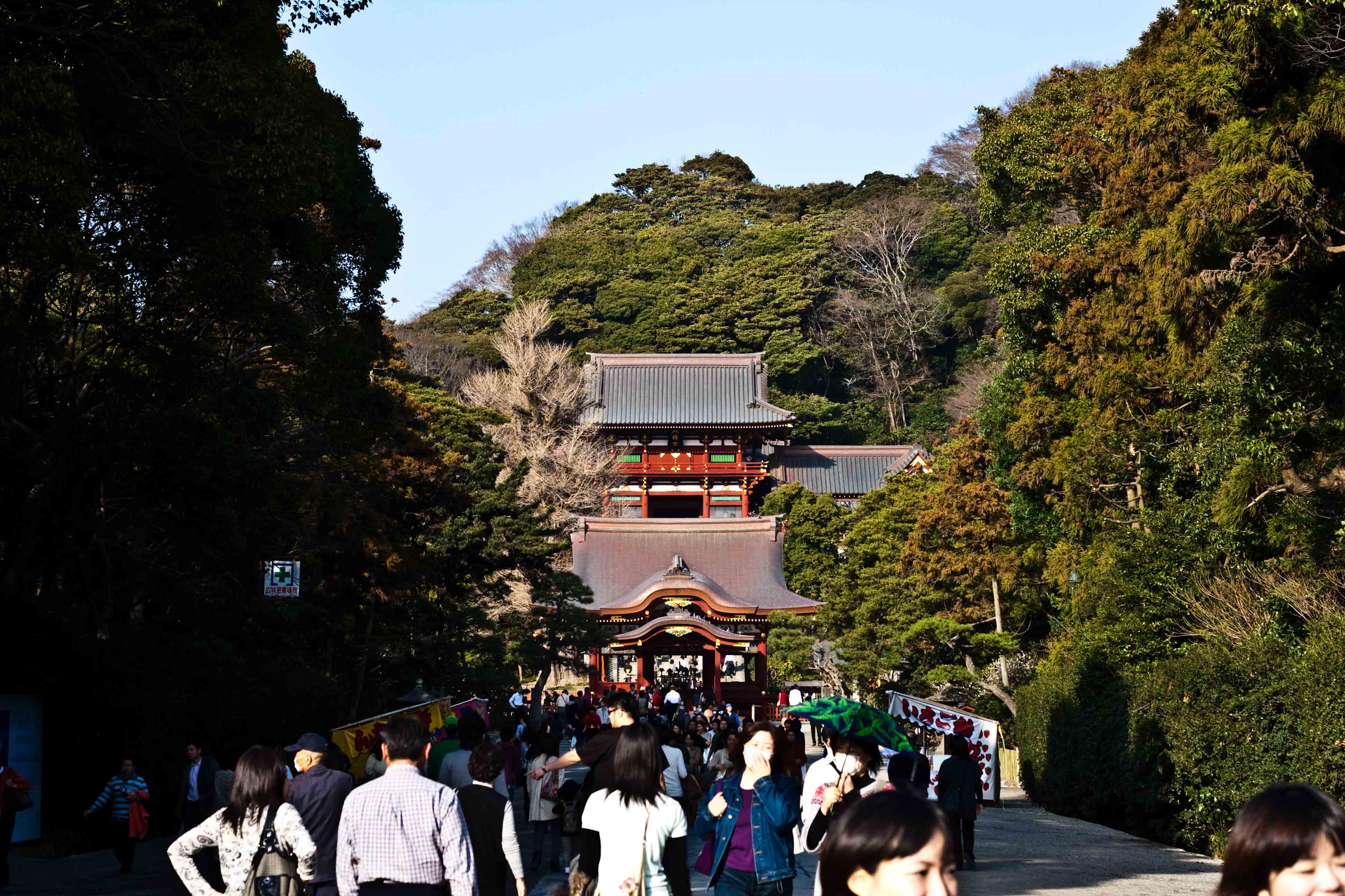 鎌倉 Kamakura #8