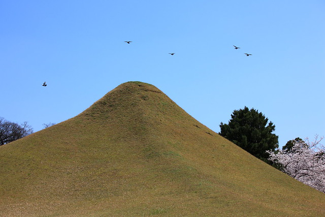 Artificial Hill Flickr Photo Sharing