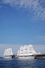 Nippon Maru Sailing Ship
