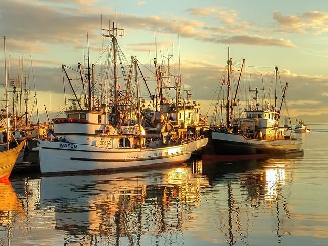 sun setting on Steveston Fish Boats