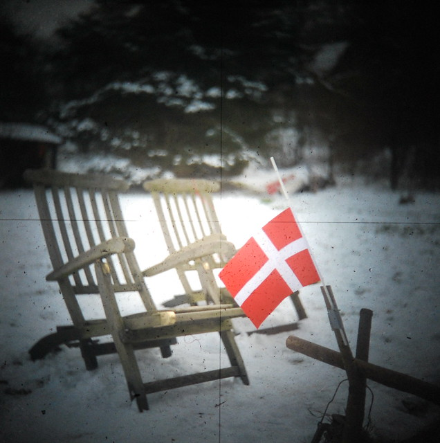 winter in the garden