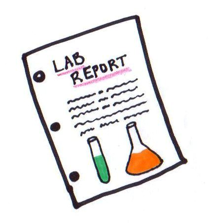 Lab Reports Mr Hogans Super Science Site – Scientific Report