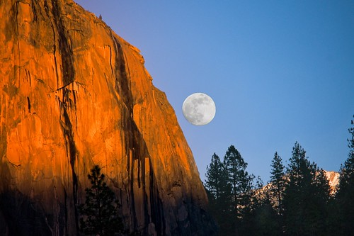 "Yosemite - ""El Capitan Moon""-(playing with Trees)""_.jpg"
