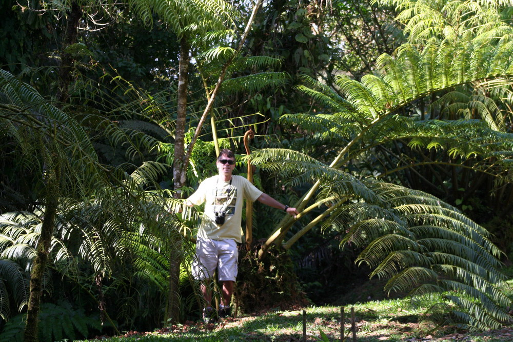 Swedish Chef Dave Wilson Botanical Gardens Southern Costa Rica