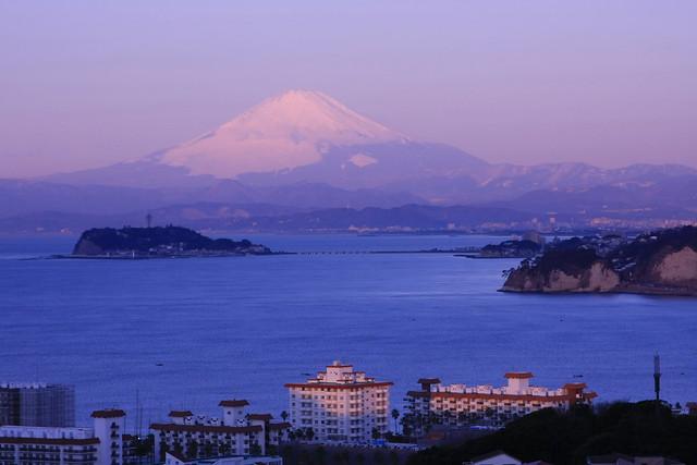 披露山公園から江ノ島方面を望む