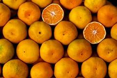 citrus, orange, valencia orange, meyer lemon, produce, fruit, food, tangelo, sweet lemon, bitter orange, mandarin orange,