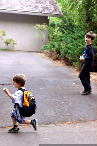 brothers going to the woods & the playground    MG 4728