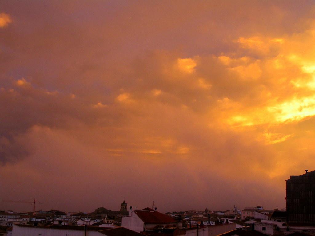 atardecer amarillo/yelow sunset