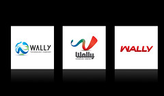 Logo Design for Wally Technology Company