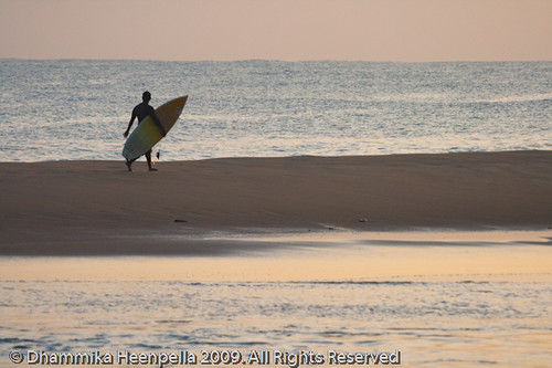 Arugam Bay Beach Resort