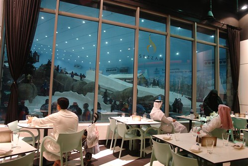 Sky Dubai en el Mall of the Emirates