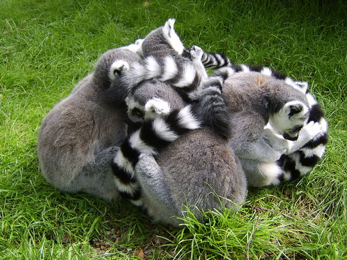 Group Hug. By Ian Layzell