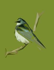 animal, perching bird, branch, wing, fauna, illustration, beak, bird,