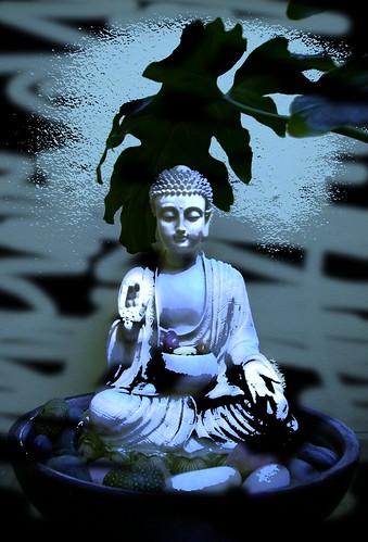 Buddha in abhaya mudra by Wonderlane