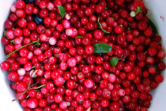 pink peppercorn, berry, malpighia, lingonberry jam, frutti di bosco, produce, fruit, food, cranberry, lingonberry,
