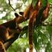Travel: Australia 2005