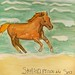 Stallion From the Sea - by Violet Inkpen