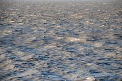 ocean_2674 web
